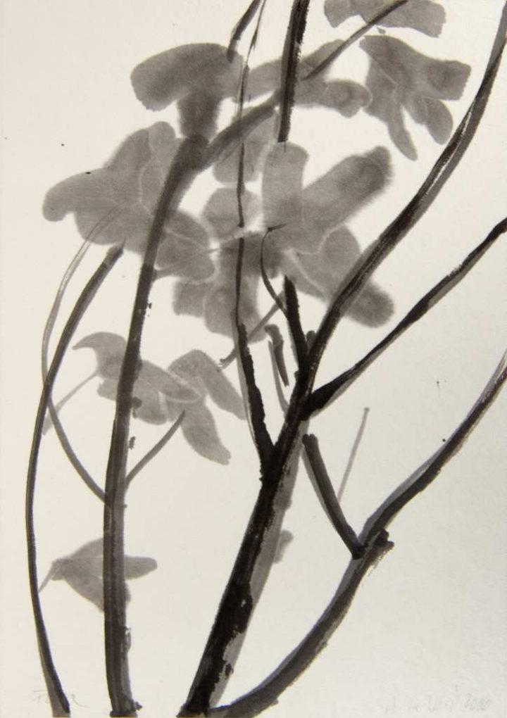 """""""Feige im Herbst"""" ist eine Arbeit der Künstlerin Anita Voigt, welche sie erneut mit Tusche zu (Japan-)Papier brachte."""
