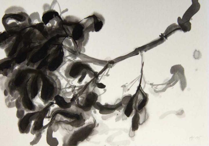 """Diese Zeichnung der Künstlerin Anita Voigt trägt den Titel """"Mistelzweig I"""" und wurde mit Tusche auf Japanpapier gebracht."""