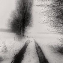 """Fotografie """"Meine schwarzen Augen"""" des Fotografen Steffen Lipski"""