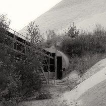 "Fotografie ""The Rose And The Machine"" des Fotografen Steffen Lipski"